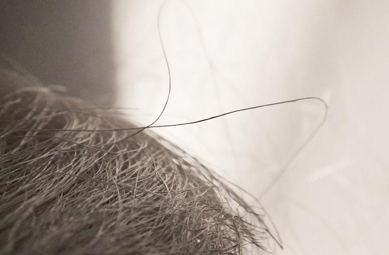 アバカの繊維